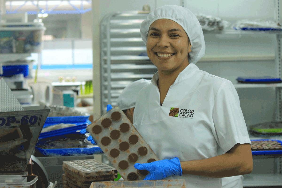 Color Cacao 1
