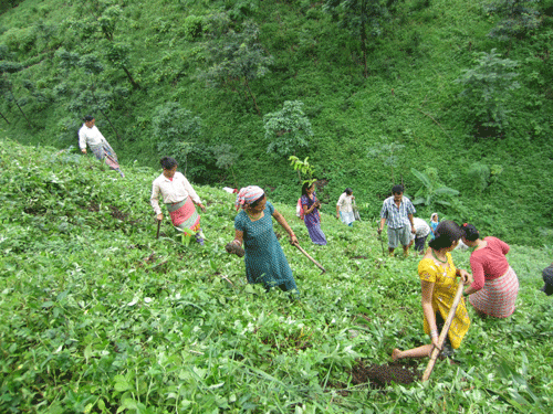 Tea Promoters India 1