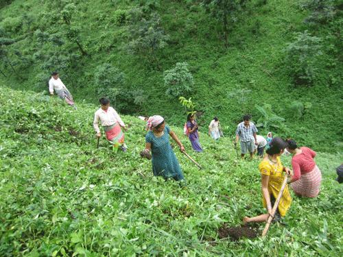 Tea Promoters India 2