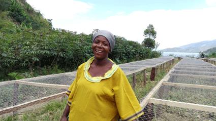 Kongolesische Kaffeeproduzenten 1