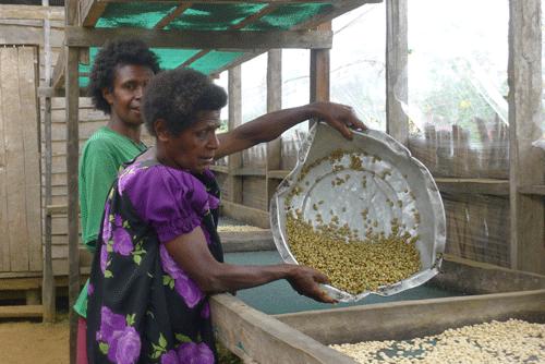 Papua-neuguineische Kaffeeproduzenten 1