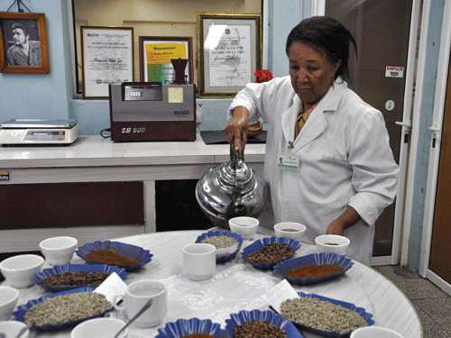 Kubanische Kaffeeproduzenten 1