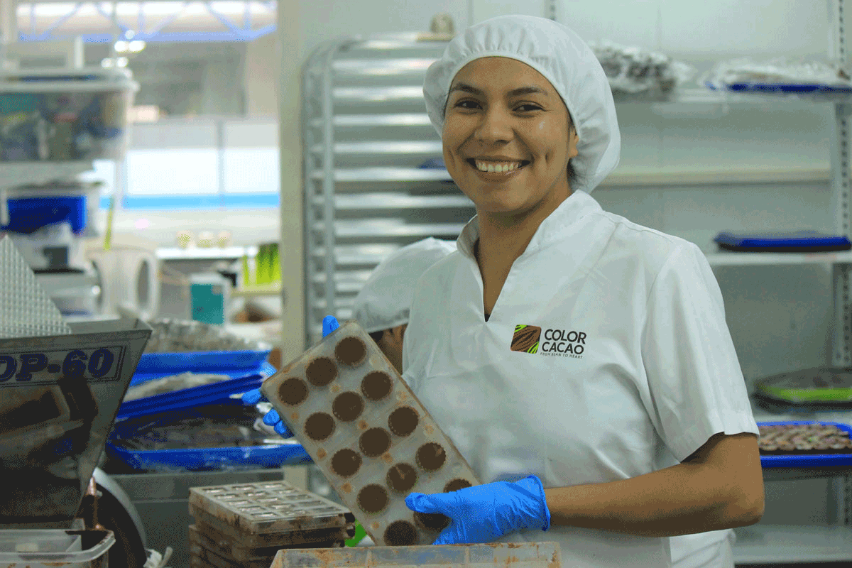 Color Cacao 2