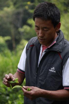 Shangrila Agro World Pvt. Ltd. 1