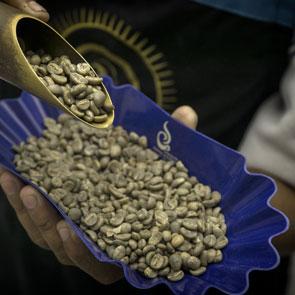 Entkoffei- nierter Kaffee