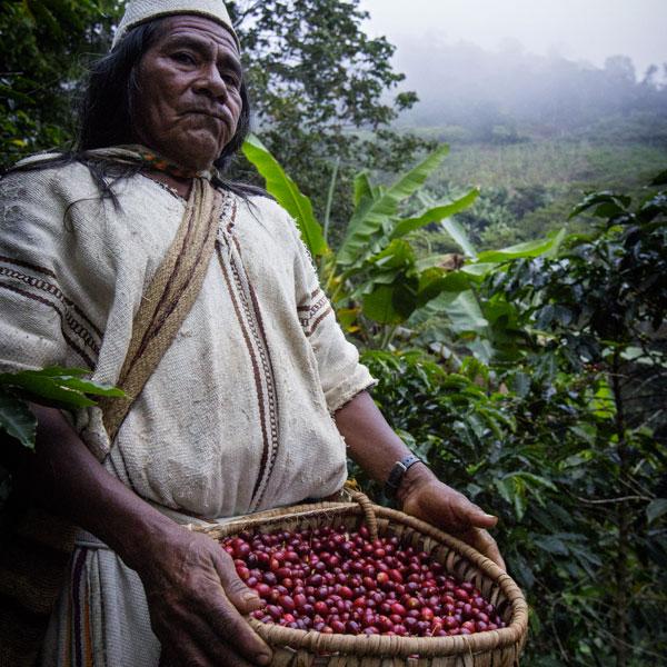 Unsere Kaffee-Kooperativen